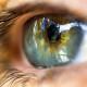 The-human-eye20150805-30600-1azgmp1